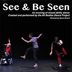 Poster for See and Be Seen